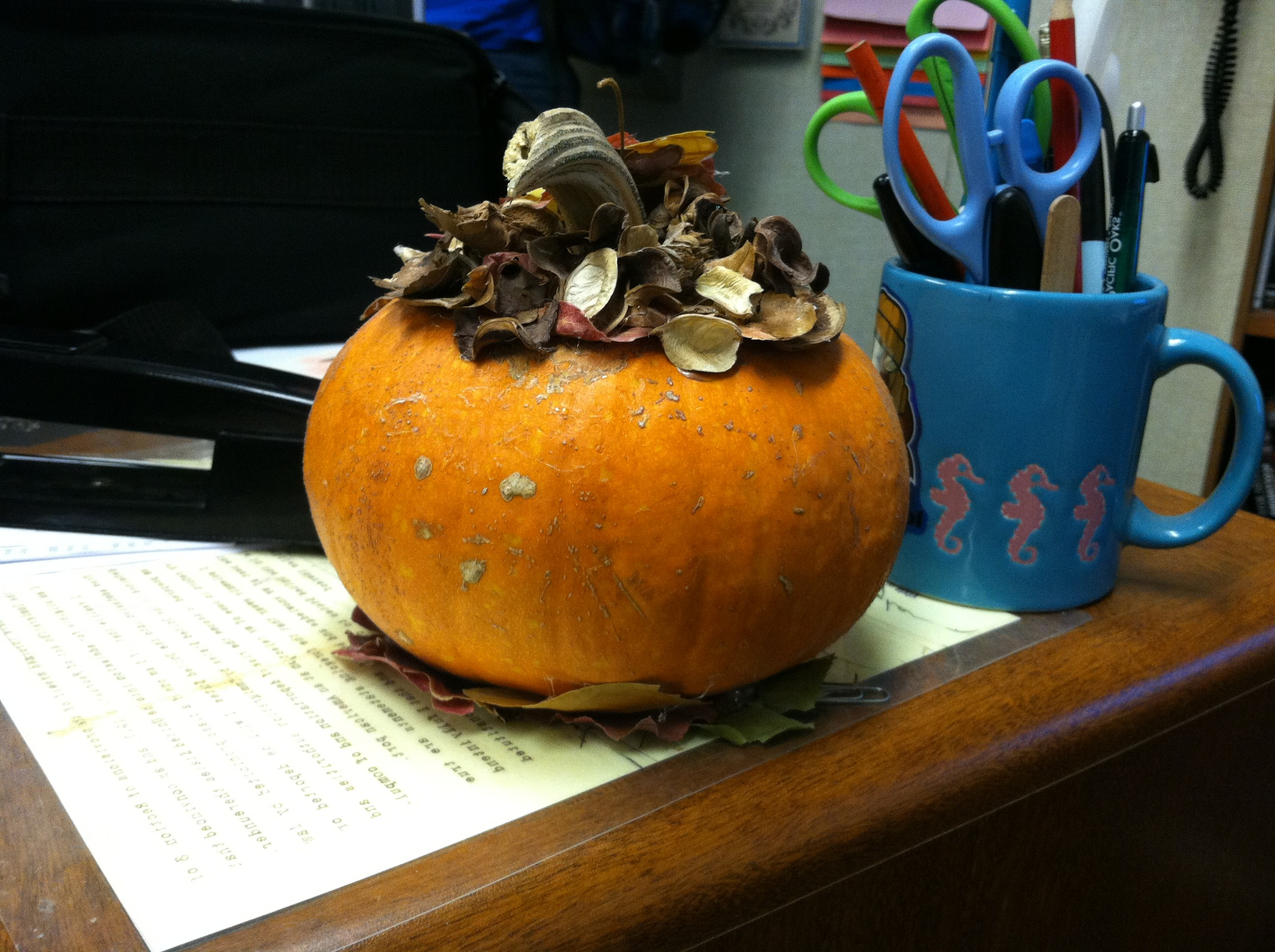 The pumpkin trend continues to grow as the weather becomes cooler. Social Studies teacher Kevin Williams has a pumpkin on a table in his classroom.