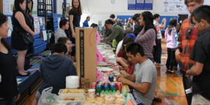 World Language Fair brings different cultures to DHS