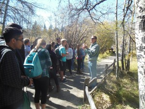 Environmental science teacher Eric Bastin explains to his students the current happenings of Taylor Creek and its salmon inhabitants on their way to the viewing area. The creek was a short walk away from the wilderness pictured above.