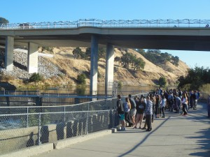 Environmental science students observe Nimbus Dam and its drained fish ladder. Because of the season, not many fish were visible from the viewing platform.