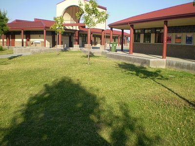 The Quad Area, Taken by Emily Kappes Copyright 2009.