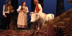 Into the Woods draws large crowd