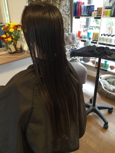 Junior Jessie Green is donating 14 inches of hair to locks of love.  A client of Kellie Palmer donates her hair on Nov 8 at Santuary Salon downtown.