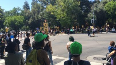 VIDEO: Black Lives Matter protest stops traffic