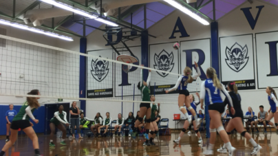 Women's volleyball nets win over Mustangs