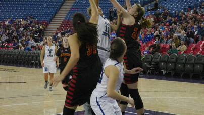 Lady Devils dog Huskies for first league win