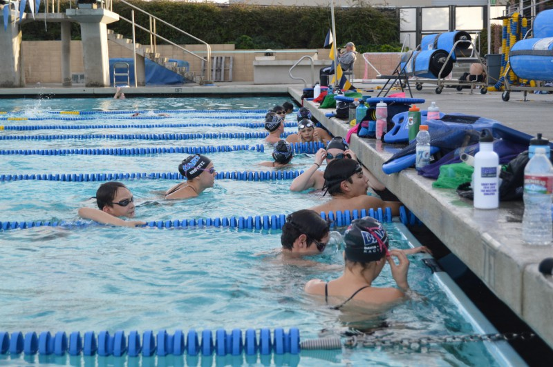 Davis Arden Racing Team is a year-round club team that many DHS swimmers train with.