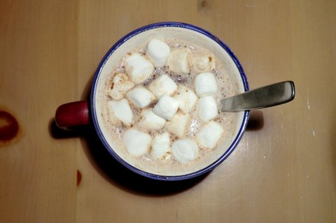 Though not as healthful, adding vanilla, marshmallows, cinnamon and/or whipped cream are easy ways to spice up a hot mug of cocoa.