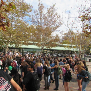 ELECTION: Photos from DHS walkout