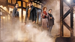 """Fantastic Beasts and Where to Find Them"" not quite fantastic, but still worth a watch"