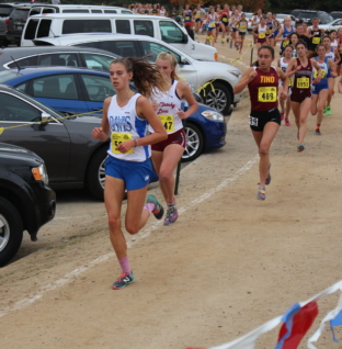Cross country succeeds at state meet, individuals move on to NXN