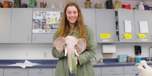 DHS 360: Hannah Herrgesell