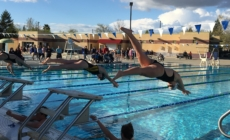 Blue Devils swim to solid win over Sheldon
