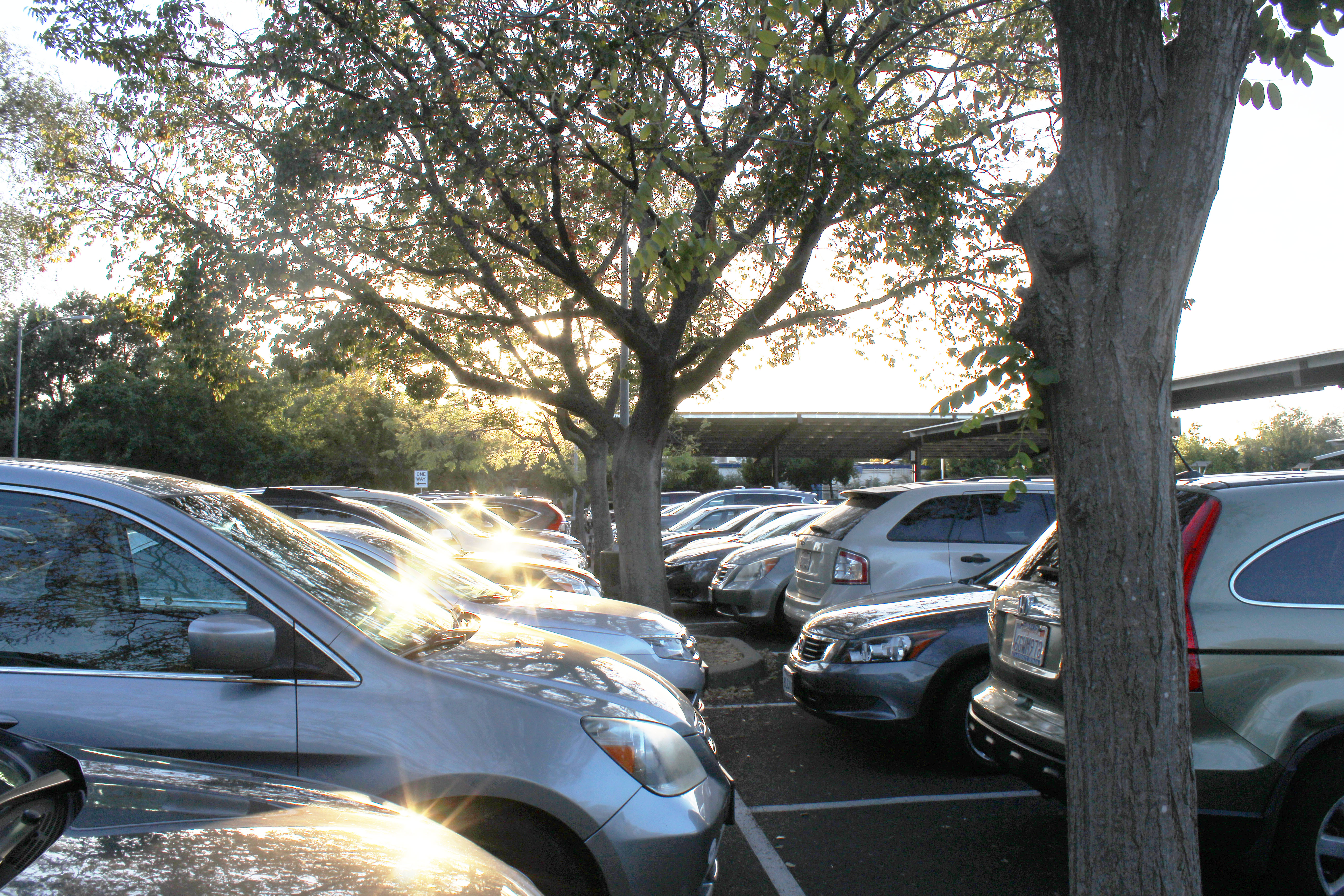 OPINION: Give seniors priority parking
