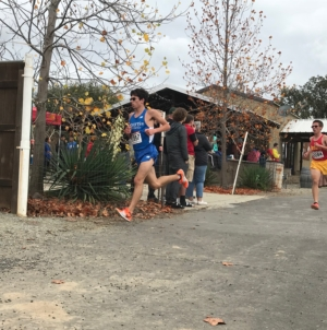 Devil runners excel at sub-section meet