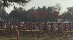 HIGHLIGHTS: Cross Country State Meet 2017