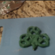 DIY: St. Patrick's Shamrocks