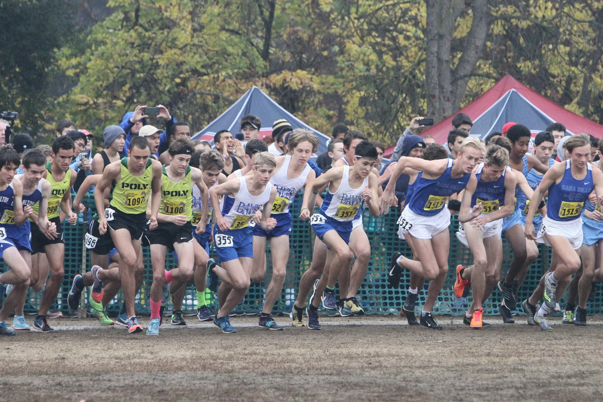 Women secure fifth, men 17th at cross country state meet