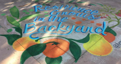 "A painted mural reading ""resilience grows in the backyard"""