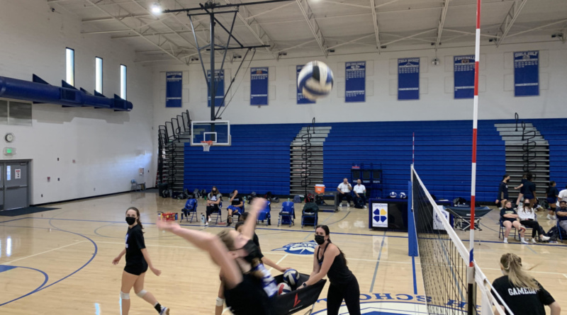 Volleyball players hitting the ball